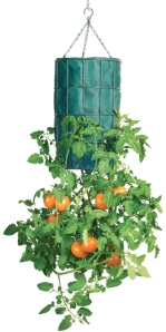 upside-down-gardening